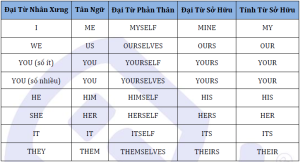 dai tu nhan xung - dai tu tan ngu - tinh tu so huu - dai tu so huu - dai tu phan than